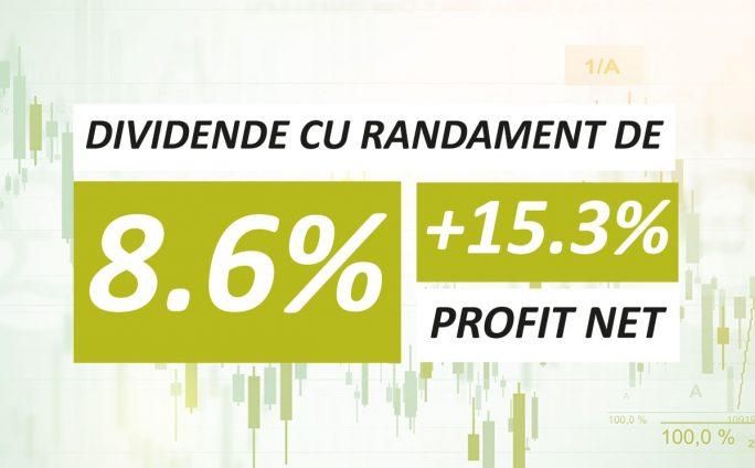 Dividende cu randament de 8,6% pentru acționari